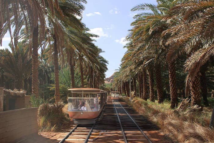 AFALULA l  Tramway  l  Al Ula